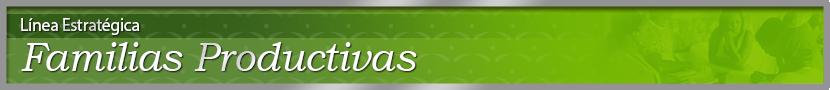 images_fotos_canada_ProgramsAndServices_Cabezotes-Strategics-Line_Cabezotes_ES_Cab-Familias_ES